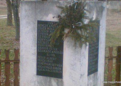 Abaújszolnok világháborús emlékmű 2010.03.27. küldő-megtorlo (1)