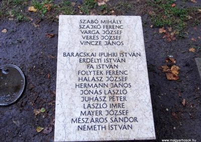 Aba II. világháborús emlékmű 2014.07.12. küldő-Méri (13)