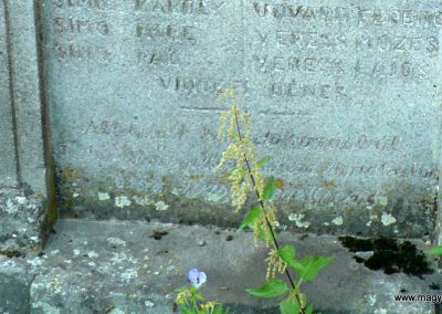 Atyha I. világháborús emlékmű 2014.07.20. küldő-Gombóc Arthur (6)