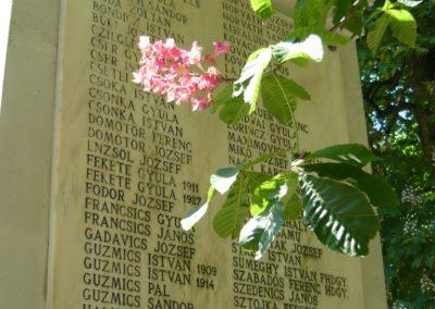 Bük világháborús emlékmű 2011.05.12. küldő-Ágca (6)