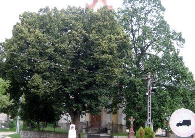 Borzavár világháborús emlékmű 2010.07.24. küldő-kalyhas (9)