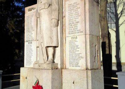 Csatka világháborús emlékmű 2014.01.14. küldő-Méri (6)