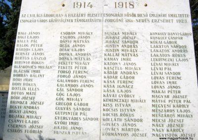 Csongrád I. világháborús emlékmű 2015.04.12. küldő-Emese (3)