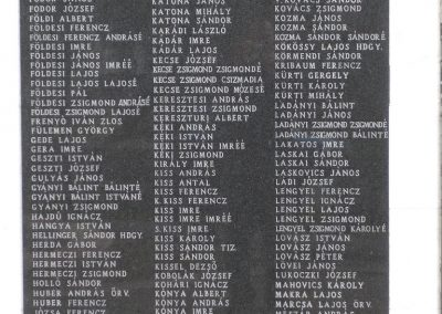 Dévaványa világháborús emlékmű 2009.03.27.küldő-Sümec (4)