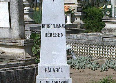 Daruszentmiklós II.vh emlékmű 2012.04.27. küldő-miki (3)