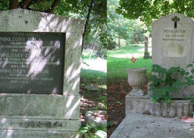 Debrecen Honvéd temető 2017.07.20. küldő-Emese-001