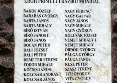 Disznajó világháborús emlékmű 2011.06.21. küldő-Ágca (5)