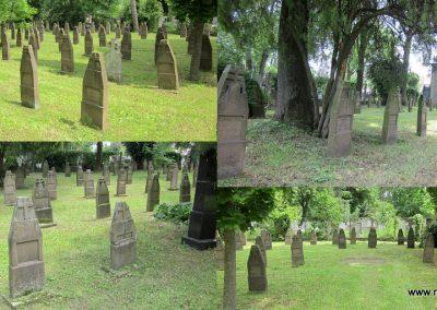 Eger Hősök temetője 2017.05.22. küldő-kalyhas (5)