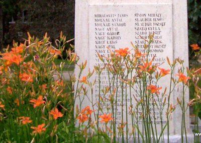 Farád I.vh emlékmű 2010.06.29. küldő-miki (12)