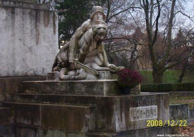 Győr-Radó sziget Világháborús emlékmű 2008.12.22.küldő-Ancsa84 (1)