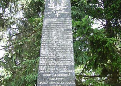 Hásságy világháborús emlékmű 2011.05.21. küldő-Bagoly András (3)