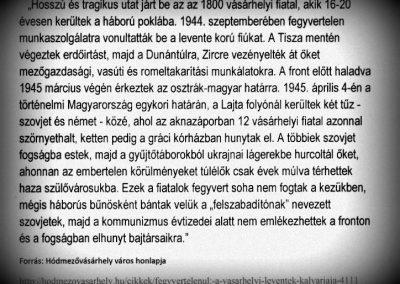Hódmezővásárhely II. világháborús levente emlékmű 2015.02.14. küldő-Emese (5)