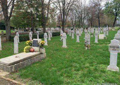 Hódmezővásárhely, Kincses temető - Hősi parcella I. és II. világháborús emlékhely 2014.10.21. küldő-Sümec (26)