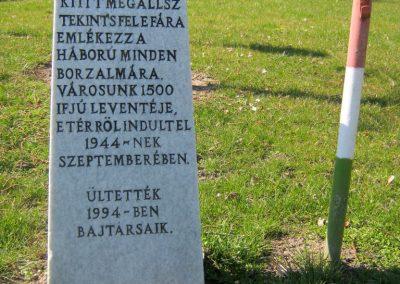 Hódmezővásárhely Szent István tér A II. világháborús levente áldozatok emlékére ültetett fa 2015.03.20. küldő-Emese (1)