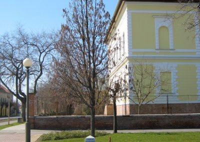 Hódmezővásárhely Szent István tér A II. világháborús levente áldozatok emlékére ültetett fa 2015.03.20. küldő-Emese (2)