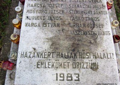 Homrogd világháborús emlékmű 2014.02.15. küldő-kalyhas (5)