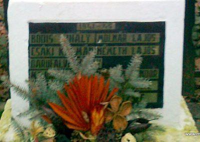 Karakó világháborús emlékmű 2011.11.20. küldő-Kercza István (3)