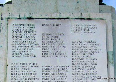 Karcag I. világháborús emlékmű 2013.05.25. küldő-kalyhas (11)