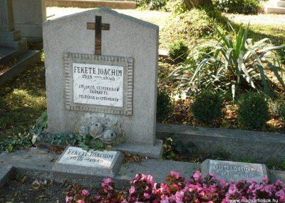 Keszthely II. világháborús katona sírkert 2013.10.04. küldő-Sümec (1)