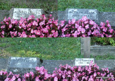 Keszthely II. világháborús katona sírkert 2013.10.04. küldő-Sümec (7)