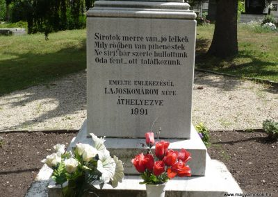 Lajoskomárom világháborús emlékmű 2009.07.26.külő-Ágca (2)