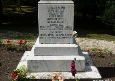 Lajoskomárom világháborús emlékmű 2009.07.26.külő-Ágca (8)