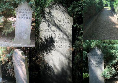Makó újvárosi református temető, hősök sírjai 2015.06.27. küldő-Emese (2)