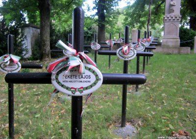 Mindszentkálla világháborús emlékhely 2013.06.25. küldő-kalyhas (11)