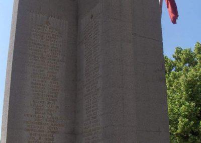 Mohács világháborús emlékmű 2008.06.04. küldő-V3t3r4n (9)
