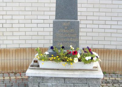 Muhi világháborús emlékmű 2007.09.20. küldő-kalyhas (2)
