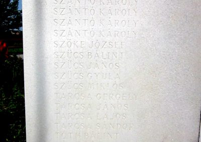 Nagyecsed világháborús emlékmű 2014.08.04. küldő-kalyhas (5)