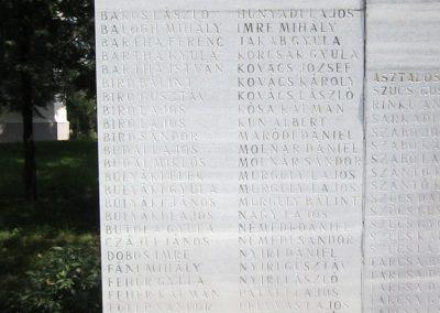 Nagyecsed világháborús emlékmű 2014.08.04. küldő-kalyhas (8)