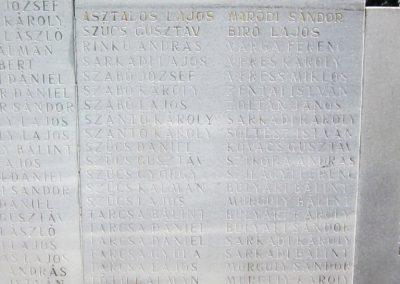 Nagyecsed világháborús emlékmű 2014.08.04. küldő-kalyhas (9)