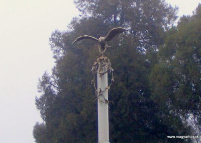 Nagykeszi I. világháborús emlékmű 2012.12.16. küldő-Méri (1)