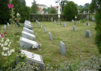 Nagyszalonta világháborús hősök emlékművei és síremlékei a temetőben 2013.06.29. küldő-Sümec (24)