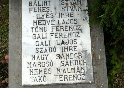 Nagyszalonta világháborús hősök emlékművei és síremlékei a temetőben 2013.06.29. küldő-Sümec (36)