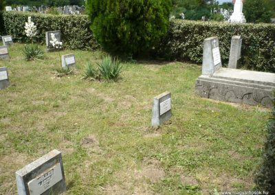 Nagyszalonta világháborús hősök emlékművei és síremlékei a temetőben 2013.06.29. küldő-Sümec (39)