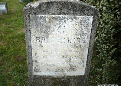 Nagyszalonta világháborús hősök emlékművei és síremlékei a temetőben 2013.06.29. küldő-Sümec (41)