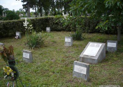 Nagyszalonta világháborús hősök emlékművei és síremlékei a temetőben 2013.06.29. küldő-Sümec (6)
