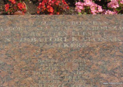 Nyírbátor világháborús emlékmű 2013.06.22. küldő-kalyhas (14)