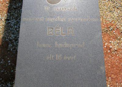 Nyíregyháza Északi temető. II. világháborús emlékmű 2017.07.16. küldő-Emese (3)