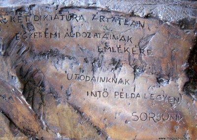 Pécs - Tudományegyetem - két diktatúra áldozatainak emléktáblája 2016.07.20. küldő-Emese (1)