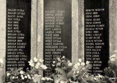 Rábapatona II.vh emlékmű 2006.11.09. küldő-harcos01 (2)