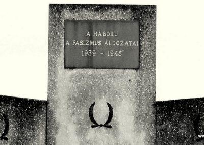 Rábapatona II.vh emlékmű 2006.11.09. küldő-harcos01(1)