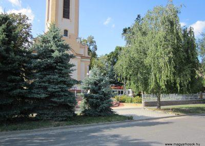 Röszke II.vh emlékmű 2011.08.20. küldő-kalyhas