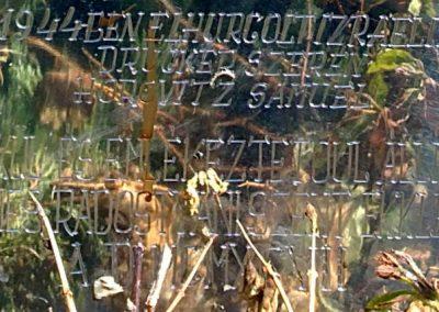 Radostyán világháborús emlék 2012.06.26. küldő-Pataki Tamás (7)