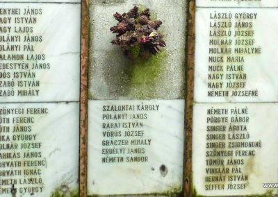Sárszentágota világháborús emlékmű 2014.07.12. küldő-Méri (6)