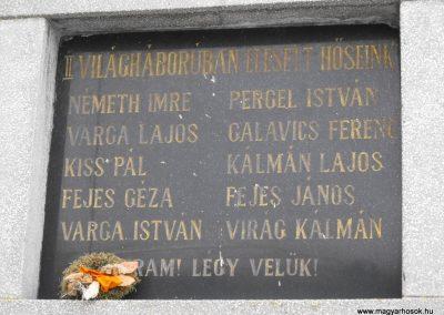 Söpte világháborús emléktáblák 2010.02.06. küldő-Gyurkusz (3)