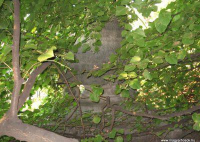 Süttő I.vh emlékmű 2008.07.05. küldő-Kályhás (2)
