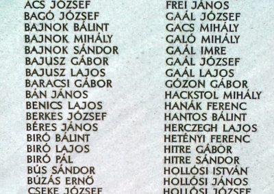 Solt I.vh emlékmű 2010.07.13 küldő-Csiszár Lehel (7)